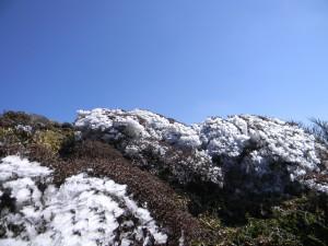 2010-11-10  韓国岳 043
