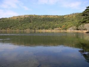2010-10-27 池巡りと白鳥山 017