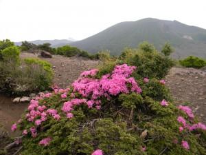 2011 6-1 甑岳 006