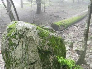 2011 7-20 甑岳 004