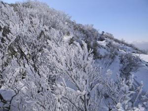 2011 1-26 韓国岳 006