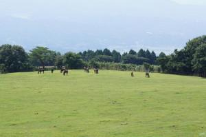 2011 9-7 栗野岳 026
