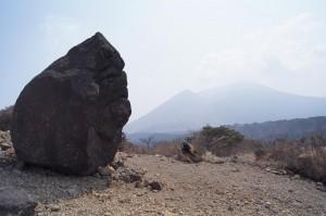 2012 3-28 白鳥山 002