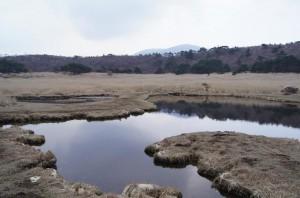 2012 4-18 甑岳 019