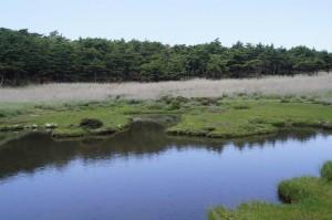 2012 6-13 甑岳 017